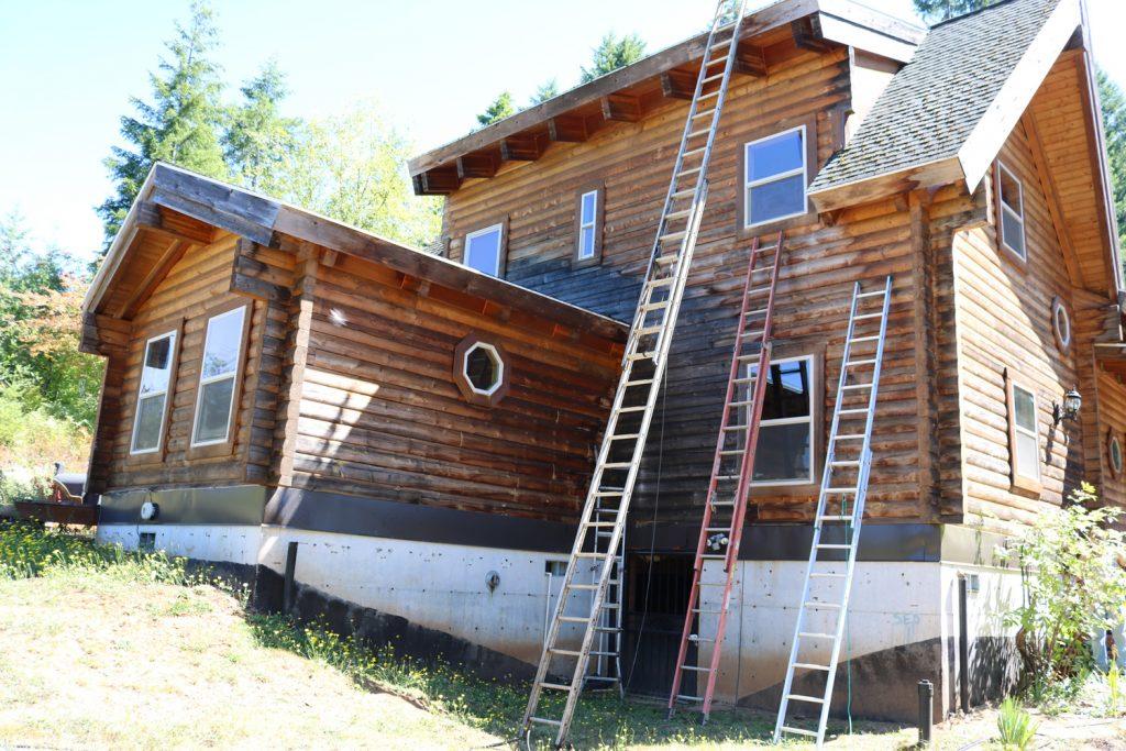 Moldy log house